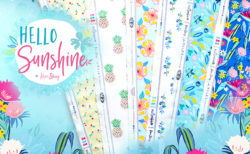Art Gallery Fabrics Hello Sunshine Collection by Katie Skoog