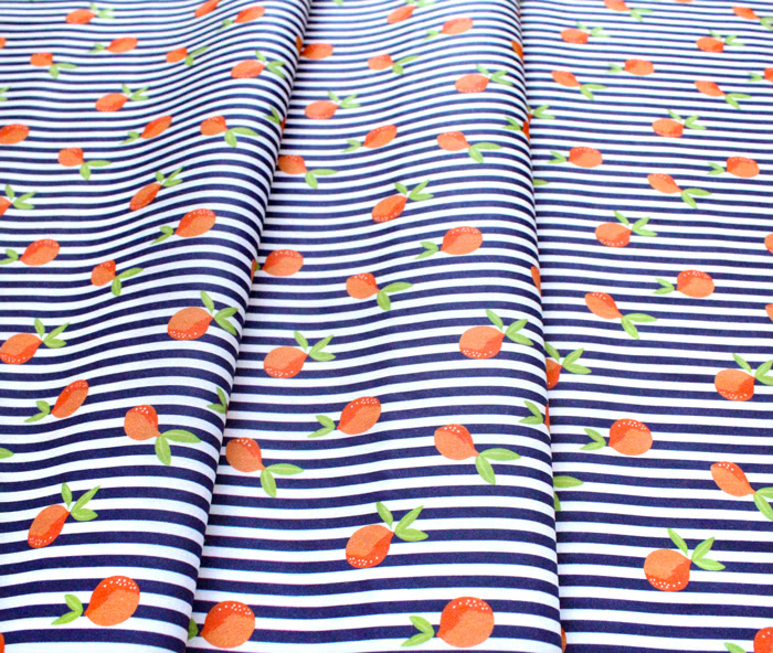 Paintbrush Studio Fabrics Citrus House 120-21875 Citrus Stripe