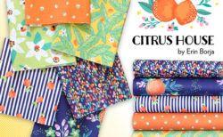 Paintbrush Studio Fabrics Citrus House Collection by Erin Borja