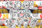 Dashwood Studio Cool For Cats Collection
