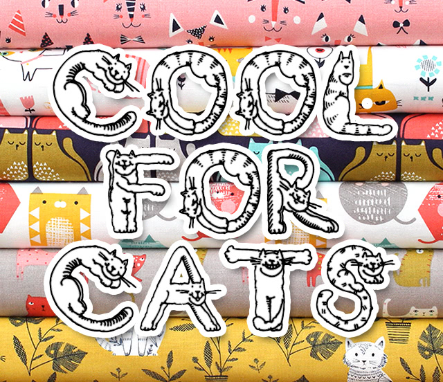 Dashwood Studio Cool For Cats Collection 入荷